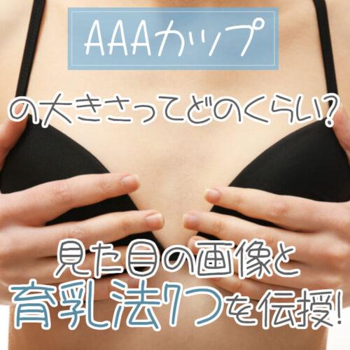 AAAカップの大きさってどのくらい?男性の意見や育乳法7つも伝授!