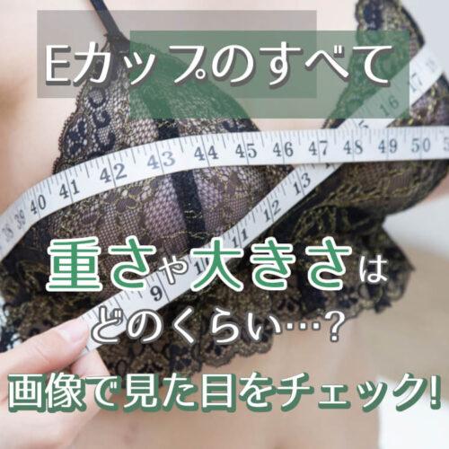 【Eカップ】重さや大きさはどのくらい…?画像で見た目をチェック!